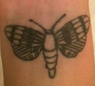 em moth 2