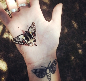 Em moth shot 1